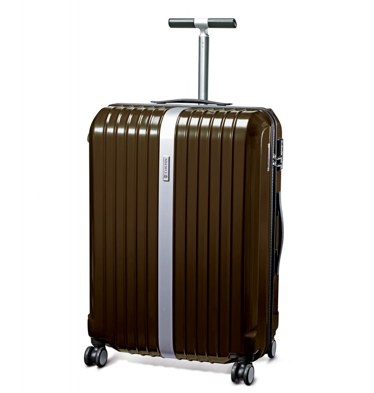 Carlton STARK Spinner Trolley Case 67cm (iridium)